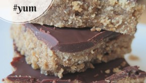 foodie fridays sunbutter bars