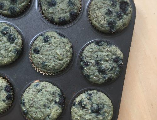 Grain Free Wild Blueberry Chia Muffins